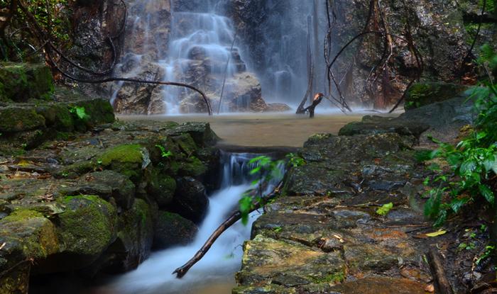 【新线首发】河源桂山玻璃吊桥,森林探险,太平古街寻觅美食