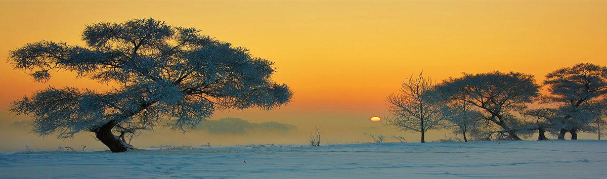 吉林市  雾凇岛  景点概况 雾凇岛是松花江上的一座小岛,位于吉林省吉