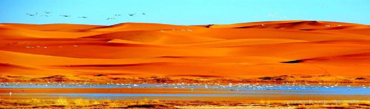 中国第四大沙漠.位于内蒙古自治区阿拉善左旗西南部和甘肃省中部边境.
